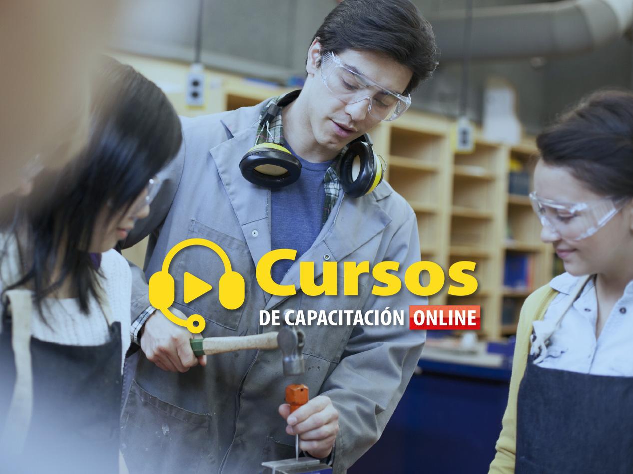 CURSOS DE CAPACITACIÓN PARA LA EDUCACIÓN TÉCNICO PROFESIONAL