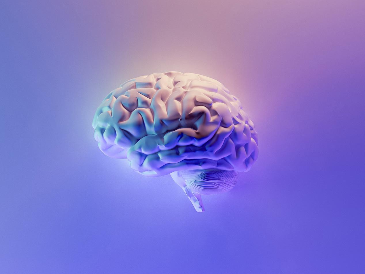 No estudiar matemáticas afecta al desarrollo cerebral y cognitivo